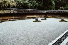 2020-apr28-edible-zen-garden-17