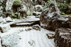 2020-apr28-edible-zen-garden-19