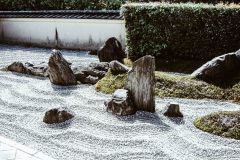 2020-apr28-edible-zen-garden-20