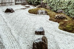 2020-apr28-edible-zen-garden-22