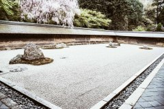 2020-apr28-edible-zen-garden-25